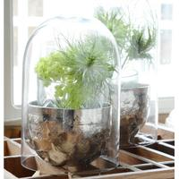 Glasklokke, lille - ib laursen