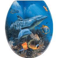 Wenko Sea Life