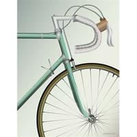 Vissevasse Racing Bicycle 50x70cm Affisch