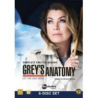 Grey's Anatomy: Säsong 12 (6DVD) (DVD 2016)