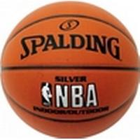 Spalding Silver Indoor/Outdoor