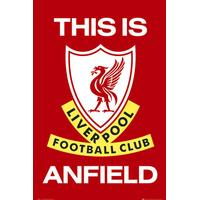 GB Eye Liverpool This is Anfield Maxi 61x91.5cm Plakater