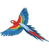 Wall sticker Parrot