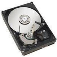 Fujitsu S26361-F3951-L500 500GB