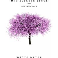 Min elskede Jesus: digte, Paperback