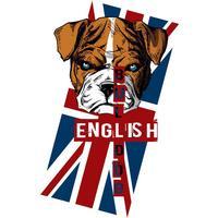 Displate English Bulldog 32x45cm Affisch
