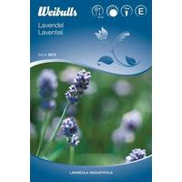 Weibulls Lavendel