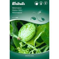 Weibulls Mini Melon