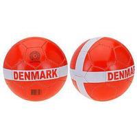 Læderbold Danmark