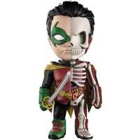Mighty Jaxx XXRAY DC Comics Robin
