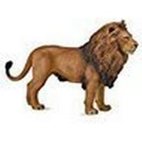 Collecta African Lion 88782