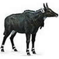 Collecta Nilgai 88764