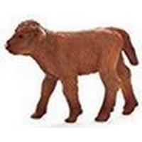 Mojo Highland Calf 387202