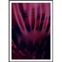 Incado Shoking Pink 50x70cm Plakater