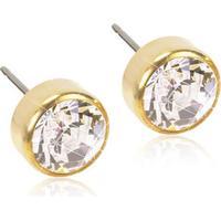 Blomdahl Blomdahl Bezel Gold Earrings Crystal