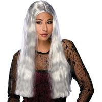 """Rubies 24"""" Grey Witch Wig"""