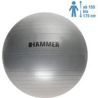 Hammer Gym Ball 65cm