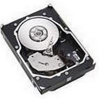 IBM 40K6800 36.4GB