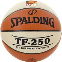 Spalding TF 250 DBB Indoor/Outdoor
