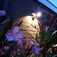Luxform 402993 væglampe til haven med PIR sensor Umbriel 230 V