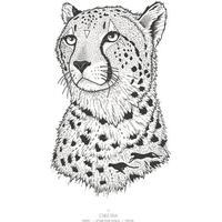 Kunstprint - Geparden