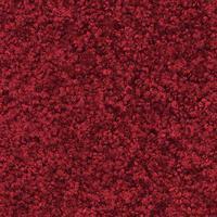 ProberTex rød 60 x 90