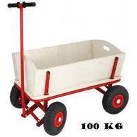 Diverse producenter Family Trækvogn 2 Børn - Lufthjul - Last op til 100 kg. Totalvægt