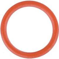 Spyder Striker O-ring Part 19