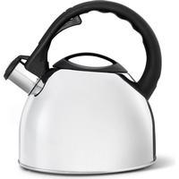 Bredemeijer Tea kettle 2.5L