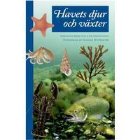 Havets dyr og planter, Hardback