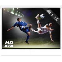 """SLS-120 Beamer Bioduk 120"""" 265 x 150 cm Hemmabio Projektor HDTV"""
