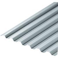 Plastmo Transparent EcoLite 16mm 4200x1090 (3071420)