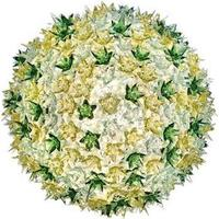 Kartell Bloom C1 Væglampe/Loftlampe Mint - Kartell