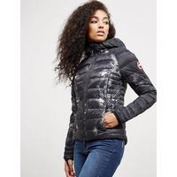 Canada Goose Womens Canada Goose Brookvale Hooded Padded Jacket - Online Exclusive Black, Black