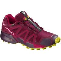 Salomon Dam Speedcross 4 GTX