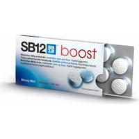 SB12 Boost Strong Mint 10-pack