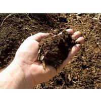 tilbud gødning græsplæne