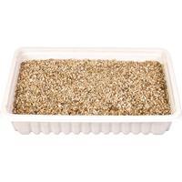 Trixie Cat Grass 100g 4235