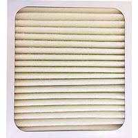 Woods Active ION HEPA Filter For AD20/AD30