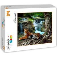 Grafika Tiger 24 Pieces