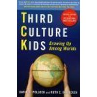 Third Culture Kids (Häftad, 2009)