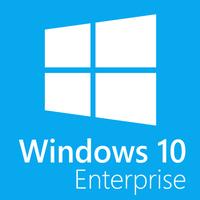 Microsoft Windows 10 Enterprise MUI (32/64-bit ESD)
