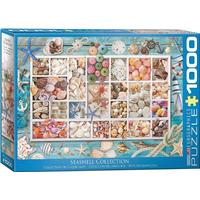 Eurographics Seashell Collection 1000 Pieces