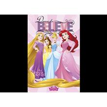 Disney All Other DISNEY PRINCES POSTER