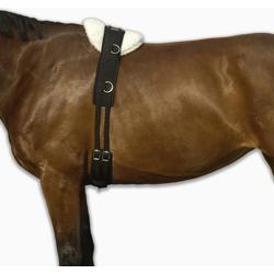FOUGANZA Longiergurt Pony und Pferd schwarz, Größe: PONY