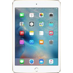 Apple iPad mini 4 Wi-Fi + Cellular 128GB MK8D2FD/A Spacegrau (Apple Sim)