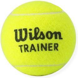 Wilson Trainer W Polybag 96 Ball, Yellow, 6, WRT131100
