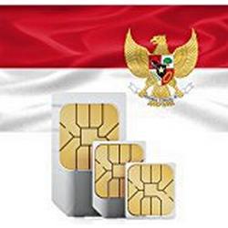 travSIM Indonesien Prepaid Daten SIM Karte + 2GB für 30 Tage / Standard,Micro & Nano SIM