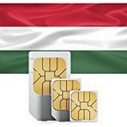 travSIM v/de/ungarn/500mb Sim Karte für Ungarn mit 500MB Datenvolumen (30 Tage gültig, Standard/Micro/Nano)