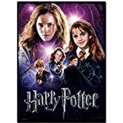 Wrebbit 3D(TM) Harry Potter Poster Puzzle GRANGER 500 Teile: 2D/PUZZLE